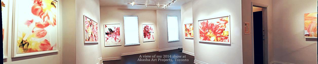Akasha show