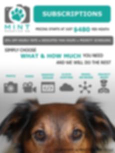 Mint Content Subscriptions 2020 .png