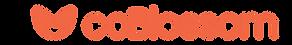 coBlossom_Logo_Primary-H-Main 1.png
