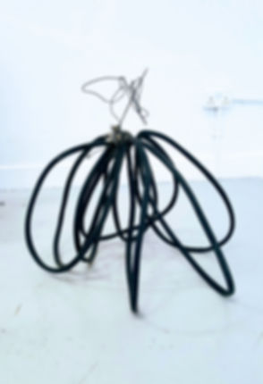 Hose Sculpture 2 with Reel filter and cr