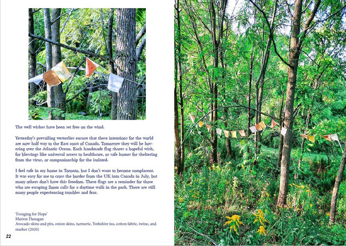 Foraging For Hope installation as featured in Open Borders magazine, September 2020