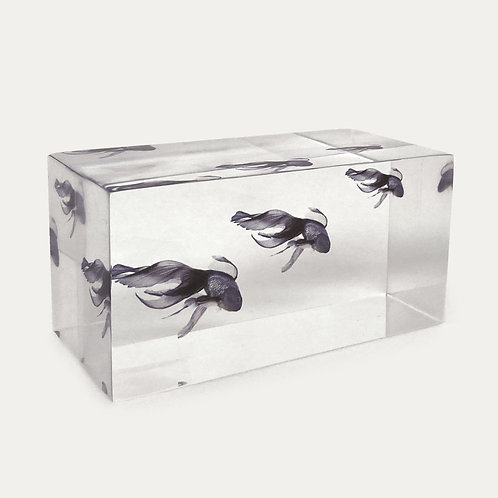 Lucite Blue Fish Decorative Paperweight