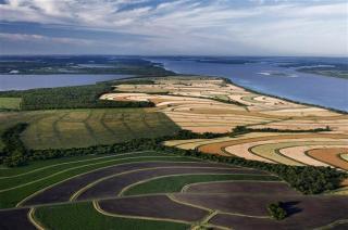 Futuro verde: el policultivo orgánico como modelo sustentable