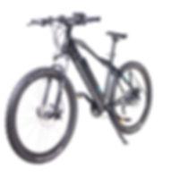speedypetes_mi52.jpg