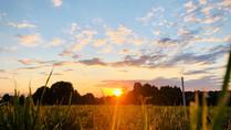 Summer Solstice: Seasonal Outdoor Storying