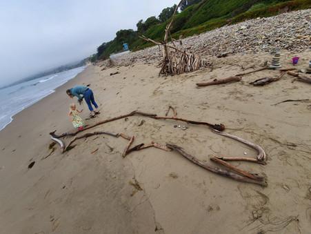 Big rigs, beaches and bears: Roadtrip USA, Part 1