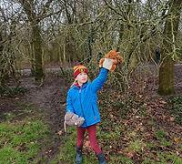 Fairytrails #1: Hawthorn