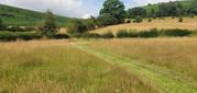 Follow the paths mown across the meadows...