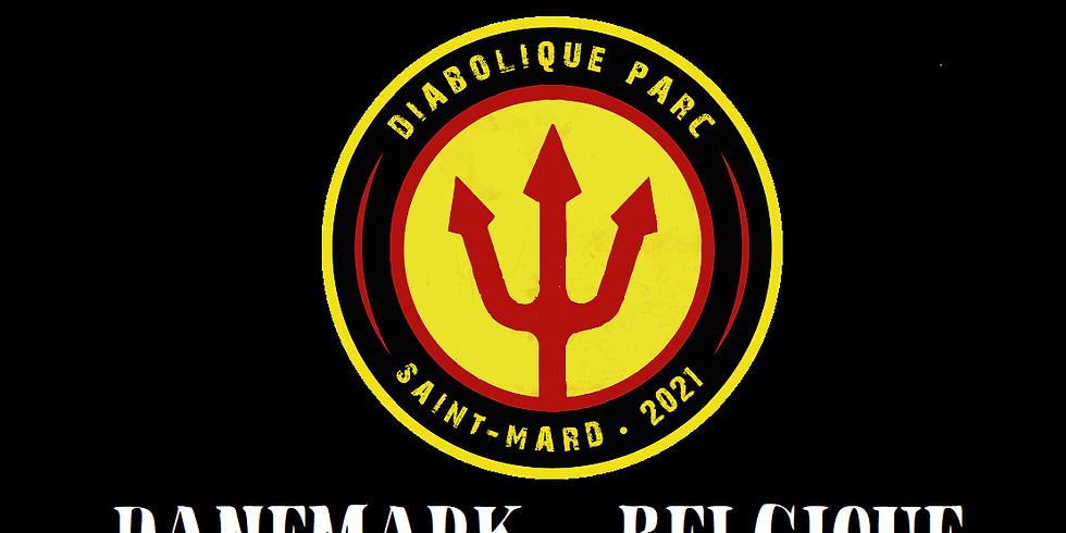 """""""Mini Diabolique Parc"""" DANEMARK - BELGIQUE 17 Juin 18h00"""