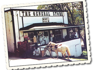 The Passing of the Port Washington General Store