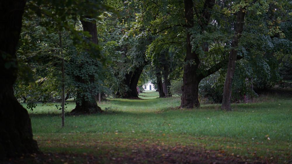 Barocke Sichtachse im Park von Grafenegg/Niederösterreich