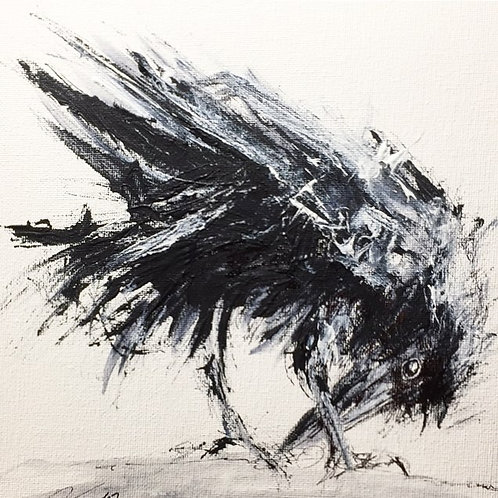 "Scruffy crow 13x15"" framed delivered"
