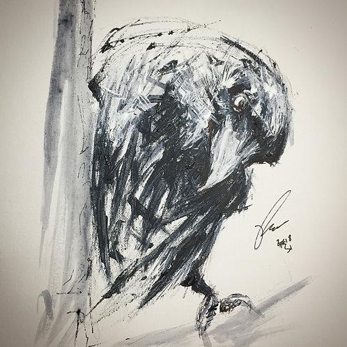 """Crow sketch no.2 10x8"""" framed delivered"""