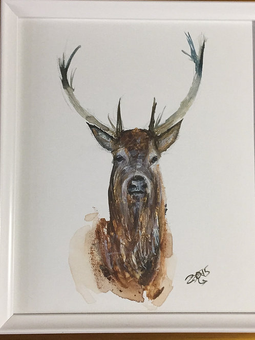 """Stag no.1 18x16"""" framed and delivered."""