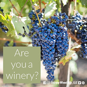 are you a winery - instagram.jpg