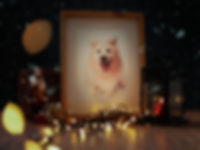 Christmas gift voucher-2.jpg