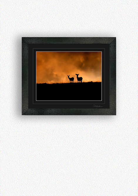 Deer Silhouettes Fine Art Print Mounted in Black Frame