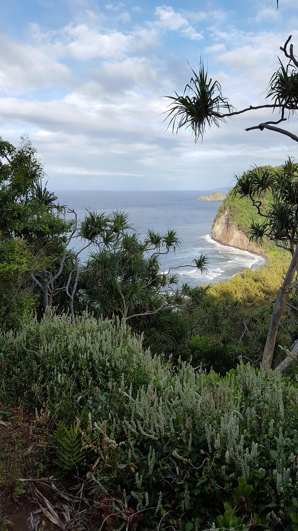 Vaiva Rykstaite, Pirmakart mama, knyga, supermama, Havajai, rasytoja, keliauju su vaikais, ekologija, emigrante, kauai,, atostogos havajuose, lankytinos vietos, aloha