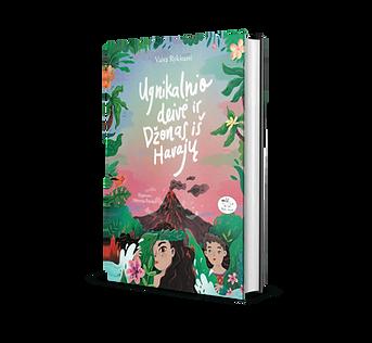 Knyga Ugnikalnio deivė ir Džonas iš Havajų, Vaiva Rykštaitė 2016 m.
