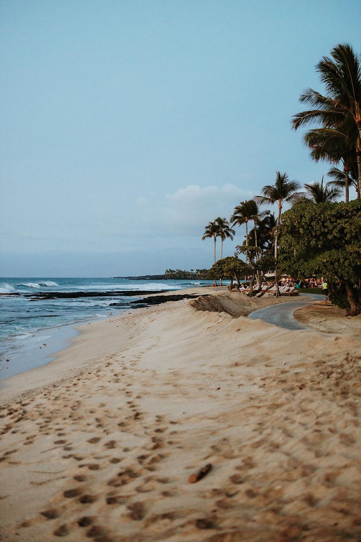 Havajai. Aloha.