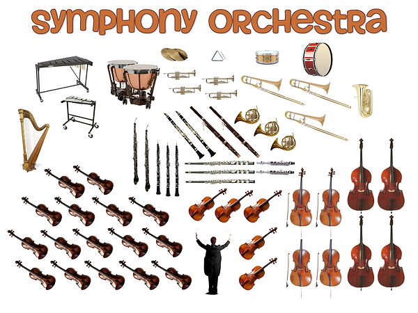 orchestra seating.png