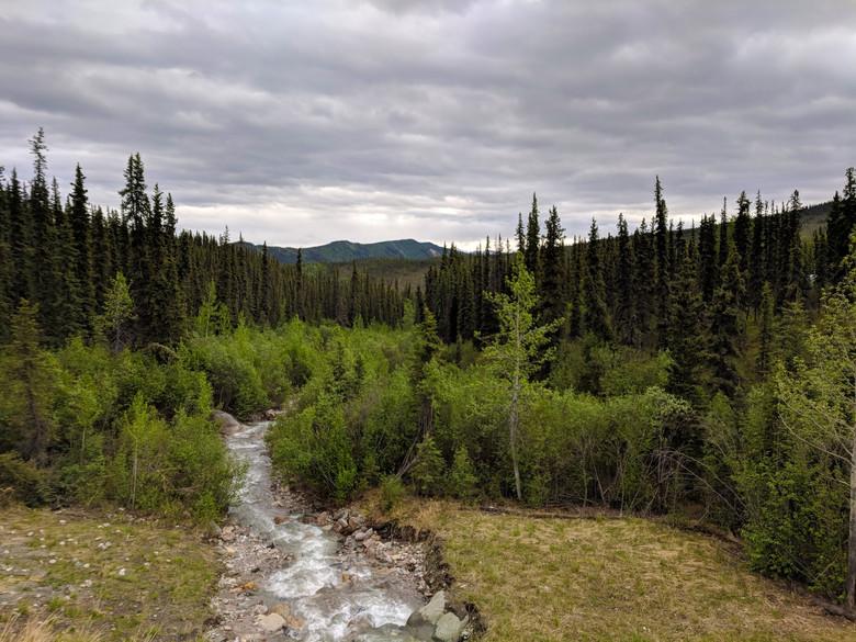 Denali National Park I