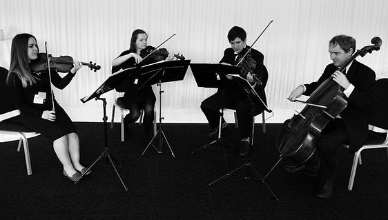 Newland String Quartet | String Quartet Hull | Hull and East Yorkshire | Weddings and Events