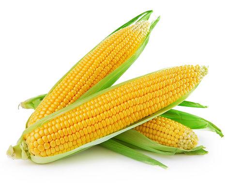 Corn Gluten Boulias Animal Feed