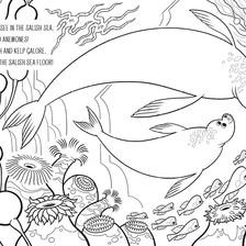 Coloring Book - Salish Sea