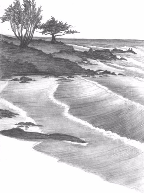 Trees by the Shore | Matted Print