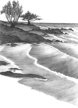 Trees by Shore