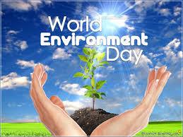 Celebrate World Environment Day