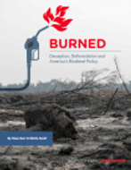 Report: BURNED: Deception, Deforestation and America's Biodiesel Policy