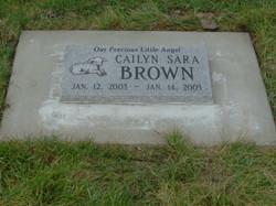 Brown-Lamb-Flat