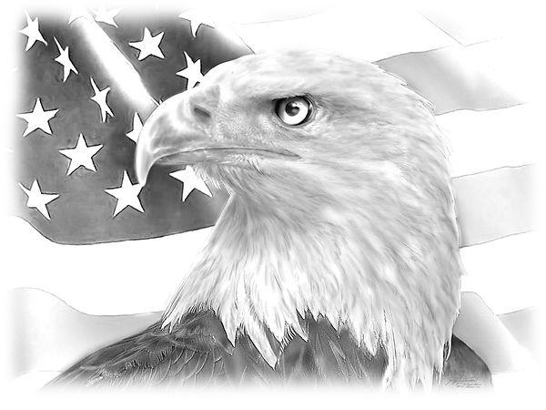 custom art artwork prints eagle america drawings pencil personalized awesome beautiful