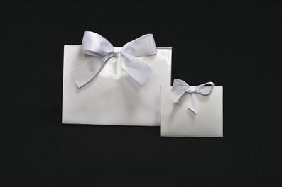 Gloss White Purse Box