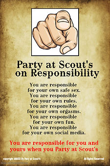 Poster on Responsibility - Made with Pos