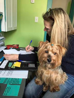 Take your dog to work!