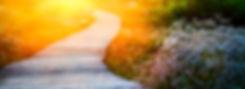 Wooden Path Over Dunes - 465420656.jpg