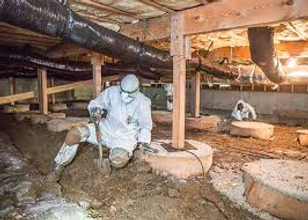 Crawl Space Cleaning & Odor Control