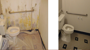 mold removal befor and after
