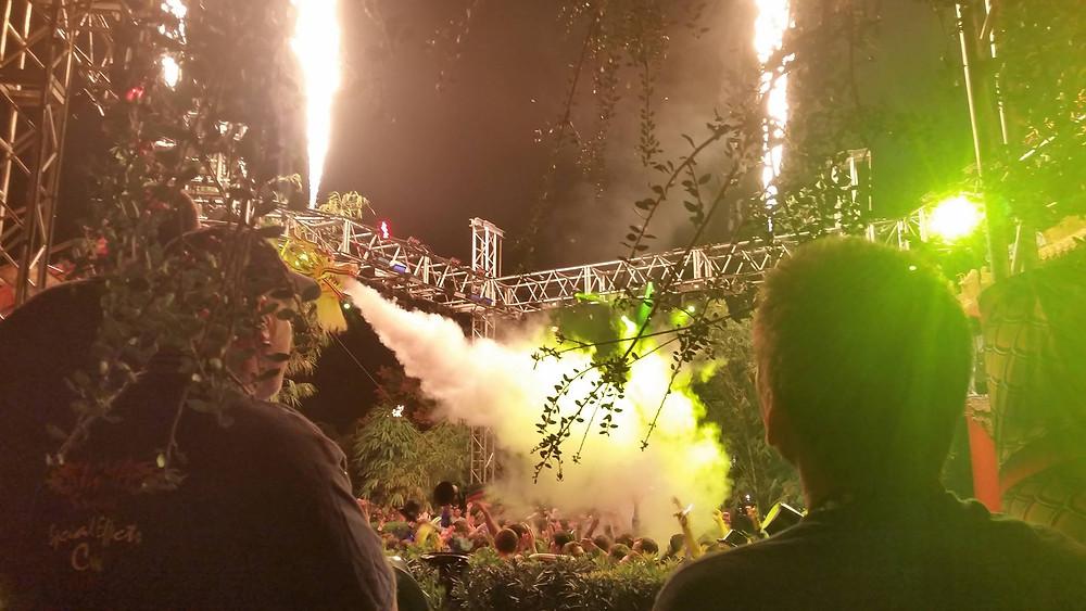 Firewater Heads at Disney New Years (3).jpg