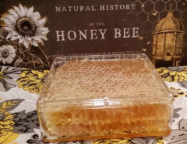 Honey on the Comb
