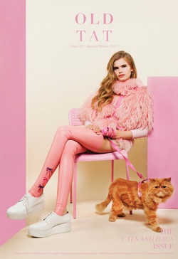 tearsheet-studio-cat-front02