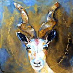 Funky Goat  40x40cm
