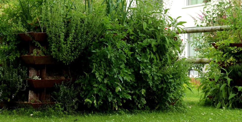 YAGOONA-growcube-hochbeet-raised bed-gar