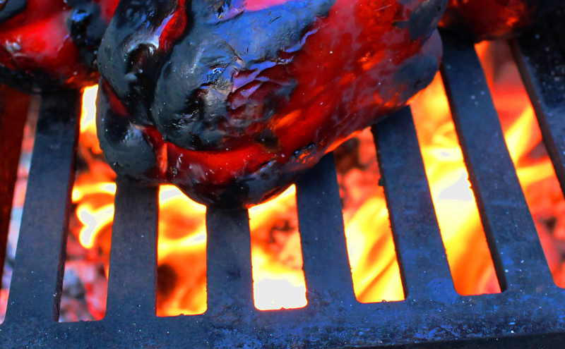 YAGOONA-barramundi-barbecue-wood-fire-gr