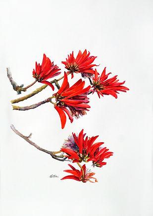 Artwork South African