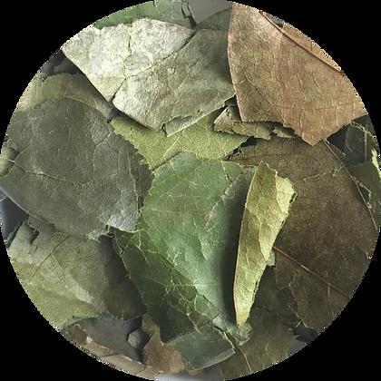 Soursop Leaf Tea
