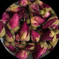 Rose Bud Java.png